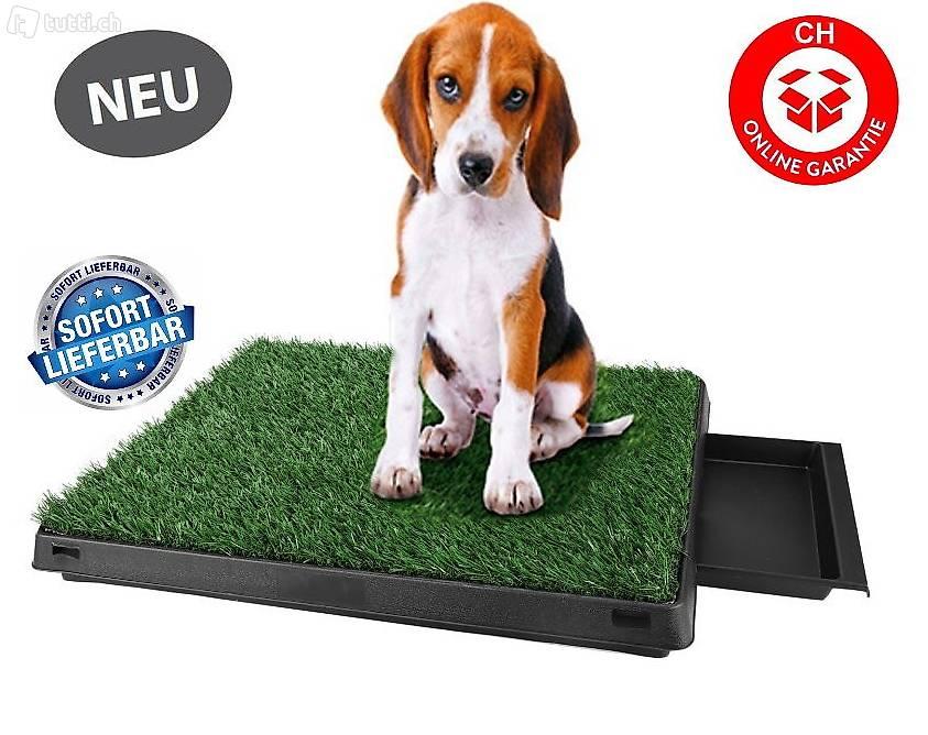 hunde klo wc hundeklo hundewc welpen trainingsger t rasen in wallis kaufen. Black Bedroom Furniture Sets. Home Design Ideas