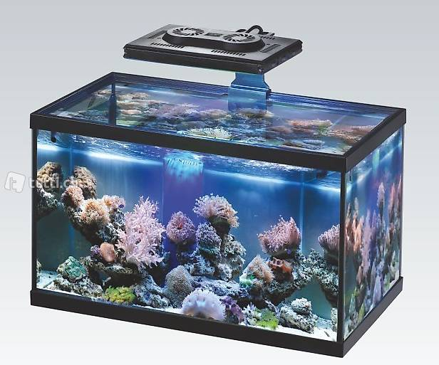 aquarium lampe led 303 35 watt in aargau kaufen aquaristik teichartikel. Black Bedroom Furniture Sets. Home Design Ideas