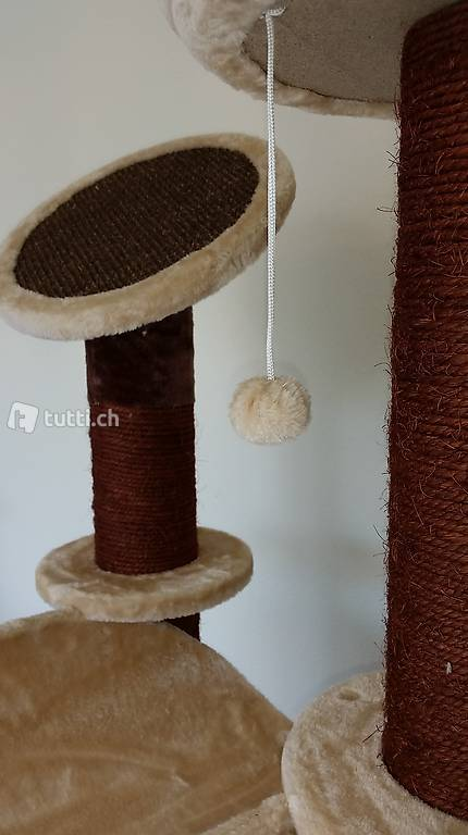 toller katzenbaum f r grosse katzen artikel q6 be in bern kaufen baumgartner. Black Bedroom Furniture Sets. Home Design Ideas