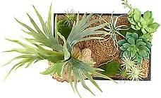 Vertikaler Wandgarten Lisa mit Deko-Pflanzen, 20 x 30 cm