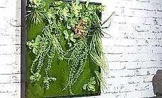 Vertikaler Wandgarten Kurt mit Deko-Pflanzen, 60 x 60 cm