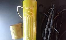 Ca. 30 Vanilleschoten inkl. 2 Aufbewahrungsboxen / Vanille