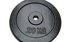 Hantelscheibe 20 kg (Gusseisen) (Gratis Lieferung)