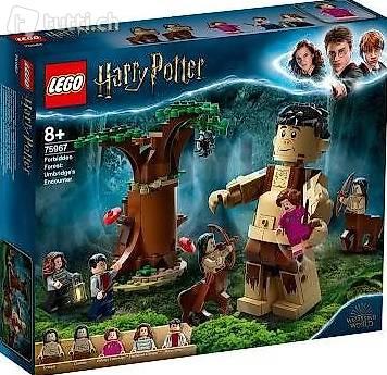 LEGO 75967 Harry Potter Der verbotene Wald