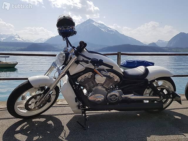 Harey Davidson VRod Muscle Custom 7200km Breitreifenumbau