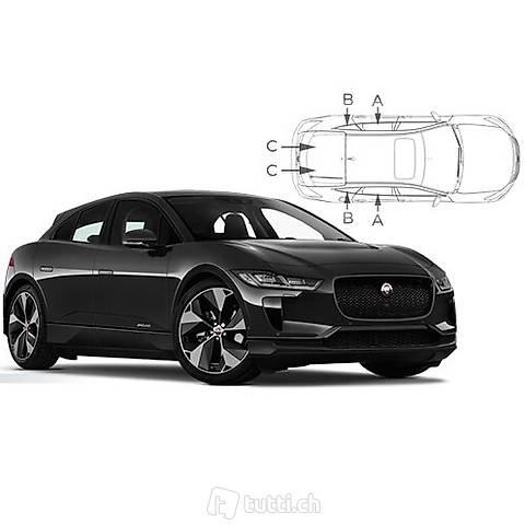 Jaguar - tendine su misura per l'auto