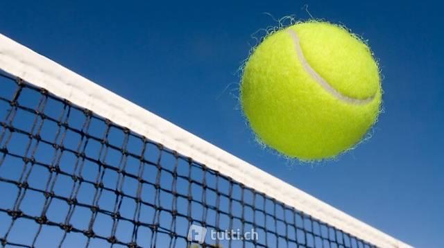 Tennisball / Spielball / Hundeball