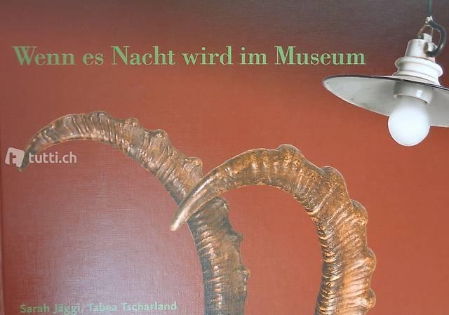 Jäggi, Wenn es Nacht wird im Museum