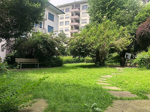 Room available in an apartment on a tree lined street In Zur